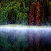 Majestic Landscape Cards